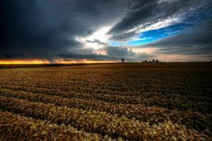 agriculture-impact-climate-change-photo