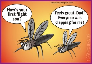 lnc-mosquito